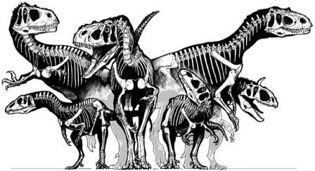 Dinosaures théropodes