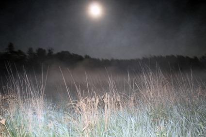 Mare de Chamarande au clair de lune