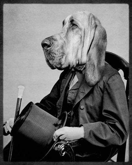 Chief Inspector Houndsbury, Grand Ole Bestiary
