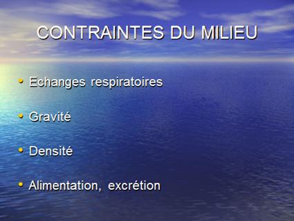 Contraintes du Milieu