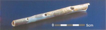 Flute de cygne de Geißenklösterle