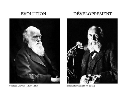 Charles Darwin, Ernst Haeckel