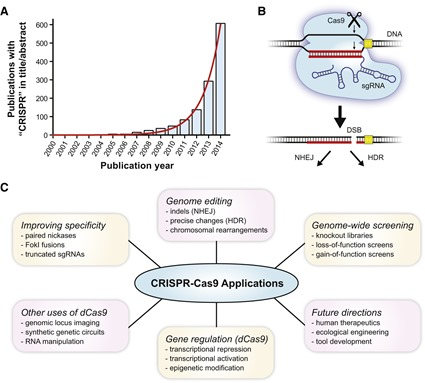 Applications CRISPR