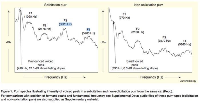 Ronron de sollicitation contre ronron normal, McComb et al., 2009