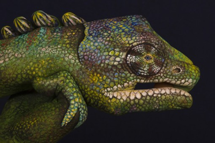 Handimals, Guido Daniele