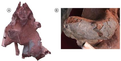 Oeuf de dinosaure Théropode logé dans le pelvis