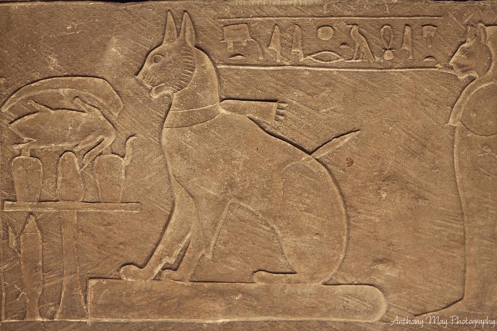 """Résultat de recherche d'images pour """"les egyptiens et leurs chats"""""""