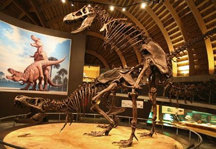 Tyrannosaurus Sex, Jurassic Museum of Asturias