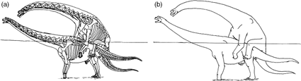 Brachiosaure copulants, Isles 2009