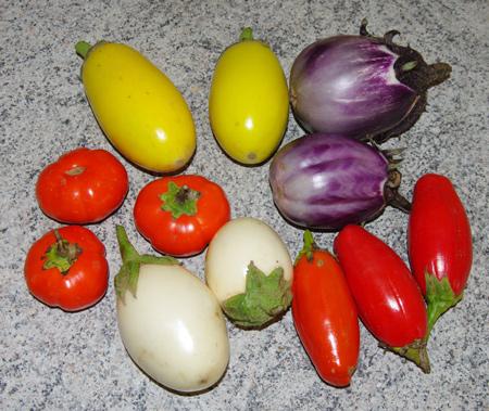 Variétés d'aubergines décoratives