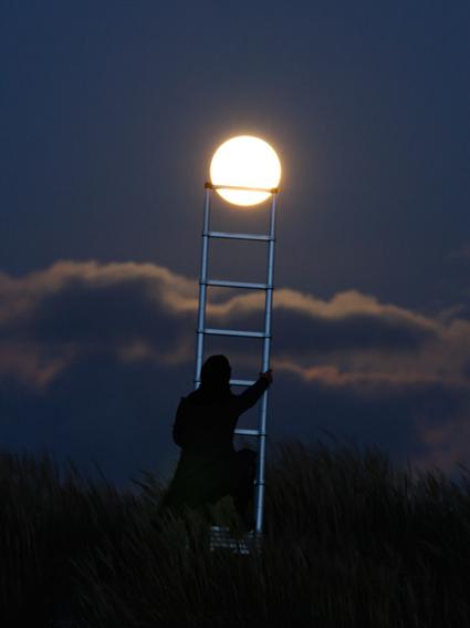 grimper sur la Lune à l'aide d'une échelle., Laurent Laveder