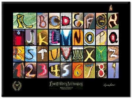 Alphabet sur motifs de papillons