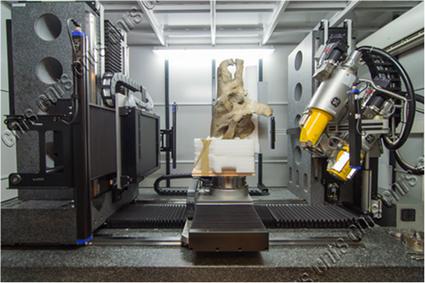 Le crâne dans le scanner. Copyright Cyril Frésillon (CNRS).