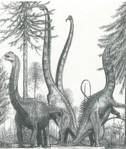 Sauropodes broutants, par Greg Paul