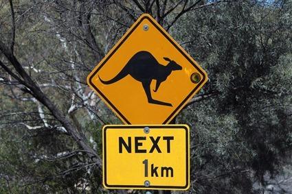 SSAFT in Australia
