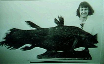 Le premier spécimen de cœlacanthe péché en 1938 posant avec Miss Courtney-Latimer, qui a reconnu sa spécificité et dont le patronyme est à l'origine du nom de genre du poisson, Latimeria