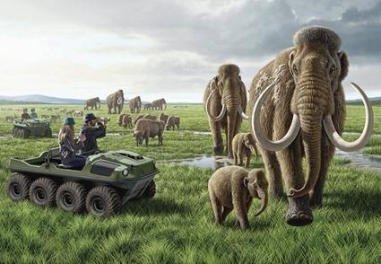 Pleistocene Park : bientôt une réalité ? Copyright Raul Martin/National Geographic Stock.
