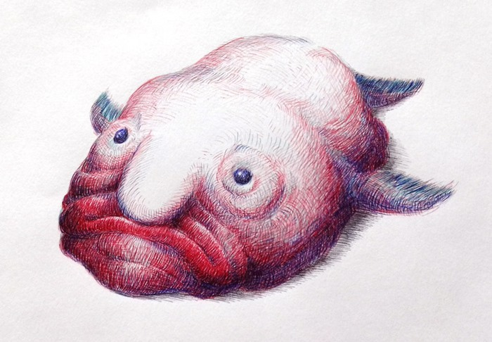 Poisson Blob, Adrien Demilly