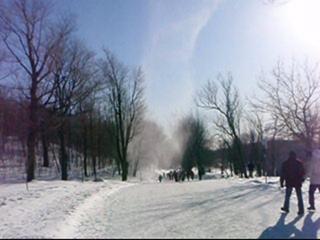 Tourbillon de neige