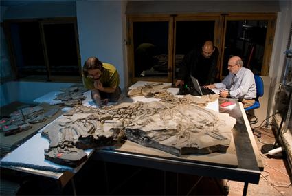 Francisco Ortega, Fernando Escaso et José L. Sanz autour du fossile de Concavenator corcovatus