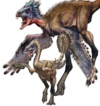 Similicaudipteryx, Xing Lida/Song Qijin/Nature